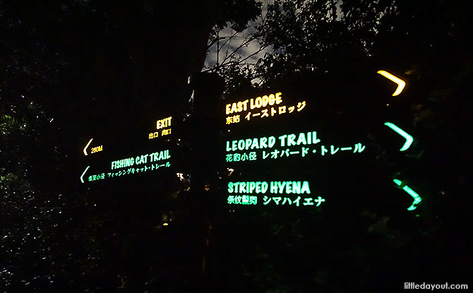 Night Safari Walking Trails: Is It Worthwhile Venturing Into The Mandai Forest On Foot?