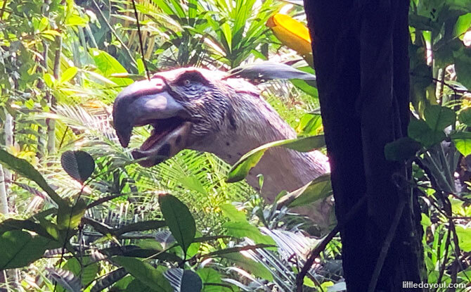 Terror Bird at Singapore Zoo