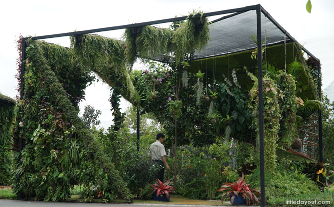 Vertical Garden Display