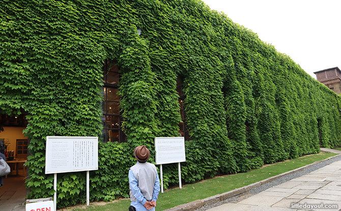 Kurashiki Ivy Square