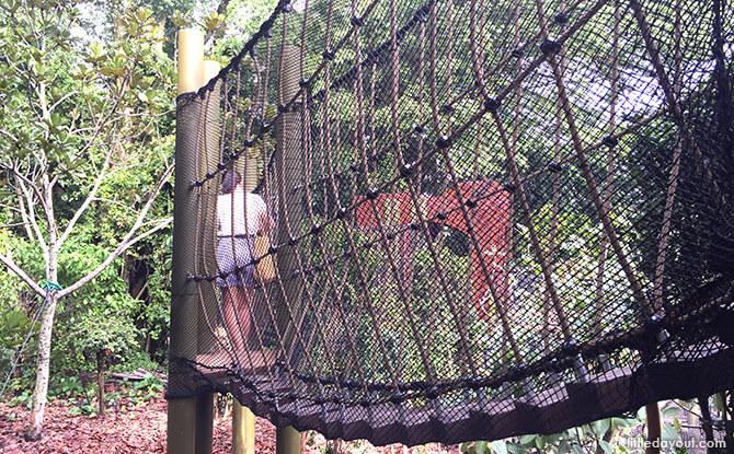 Rope Bridge at Forest Zone at Jacob Ballas Children's Garden New Extension