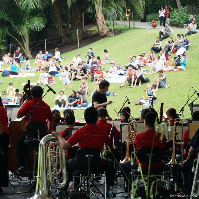 Attend an outdoor concert