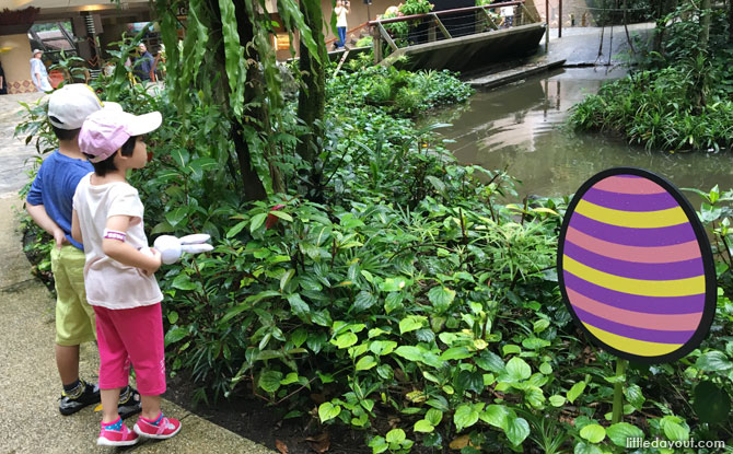 Going on the Jurong Bird Park Easter Egg Hunt 2019