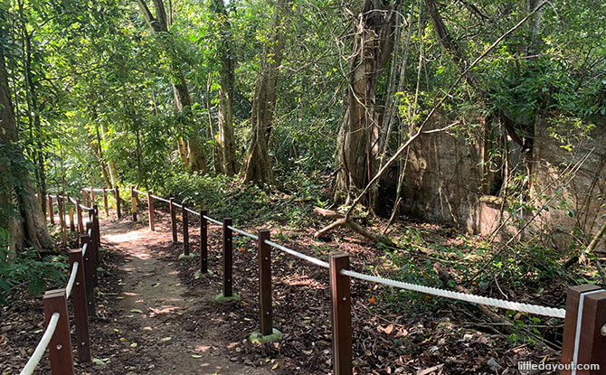 Path through Thomson Nature Park