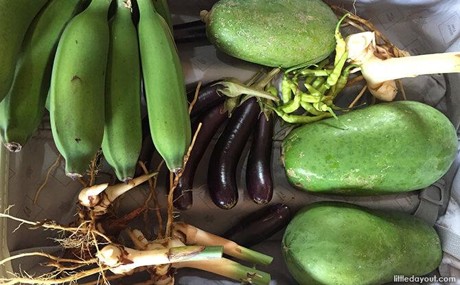 Blue Mountain Kelong Vegetable Shopping Loot