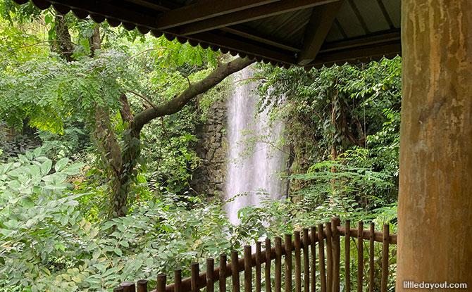 Waterfall observation point, Jurong Bird Park