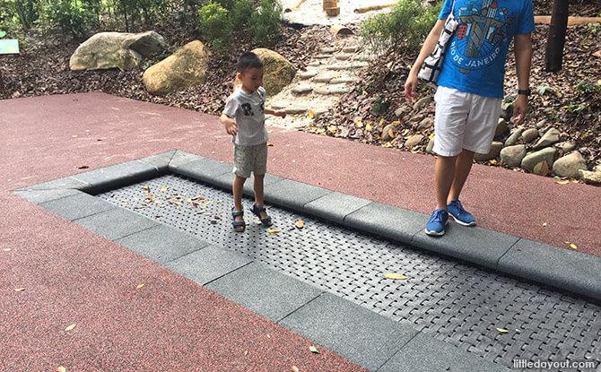 Wheelchair Trampoline at Forest Zone at Jacob Ballas Children's Garden New Extension
