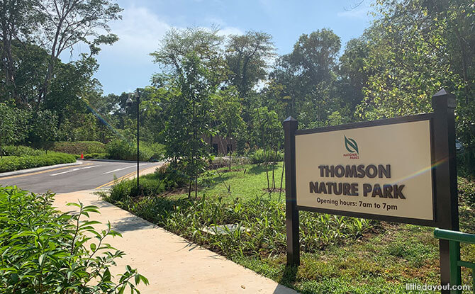 Access to Thomson Nature Park from Upper Thomson Road