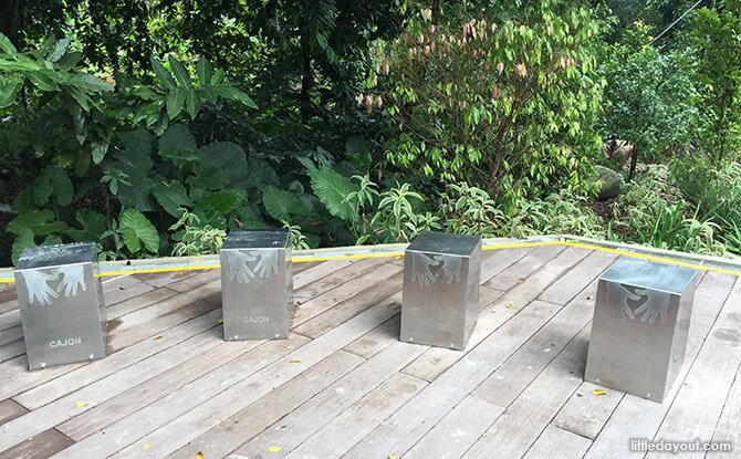 Cajon at Forest Zone at Jacob Ballas Children's Garden New Extension