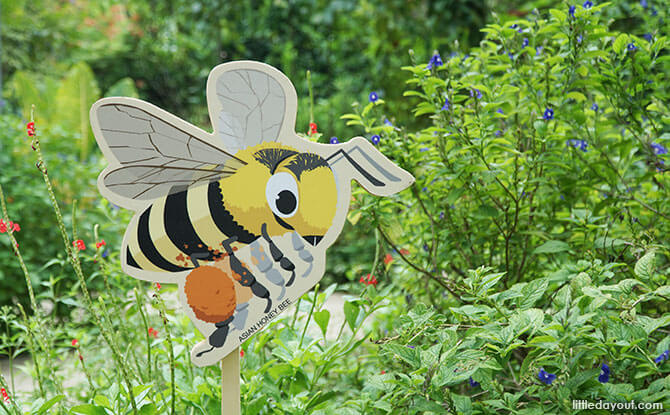 Bee Trail At HortPark: The Buzz On The Bees