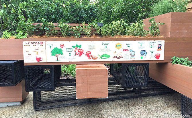 Cocoa Signage at Orchard Zone at Jacob Ballas Children's Garden New Extension