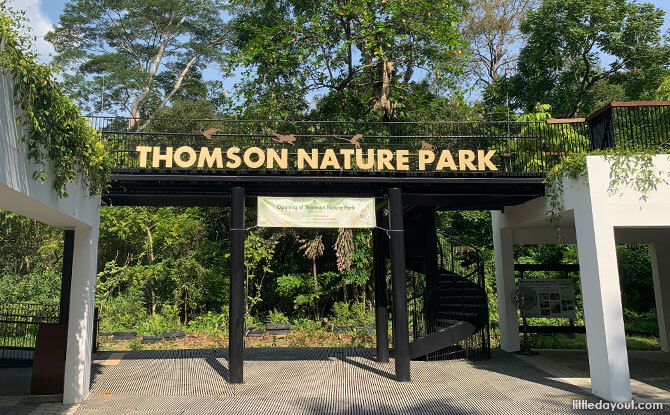 Nature Appreciation Walk at Thomson Nature Park - 8 Feb 2020