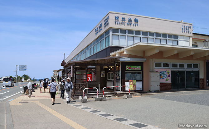 Lunch Spots Between the Tottori Sand Museum and Sand Dunes