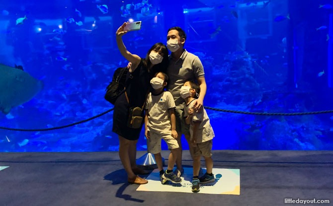 Wefie with the fishes