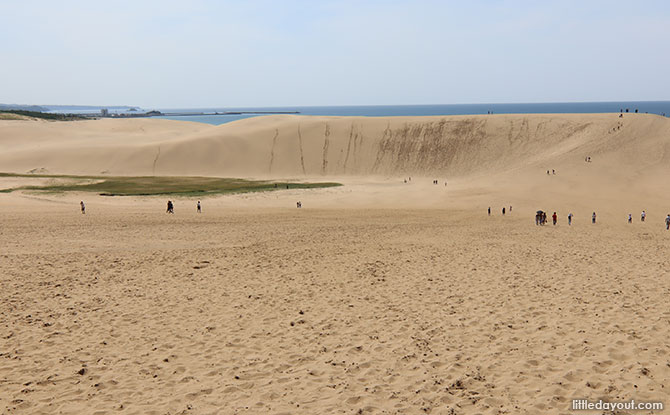 Picturesque Desert-like Sand Dunes in Japan