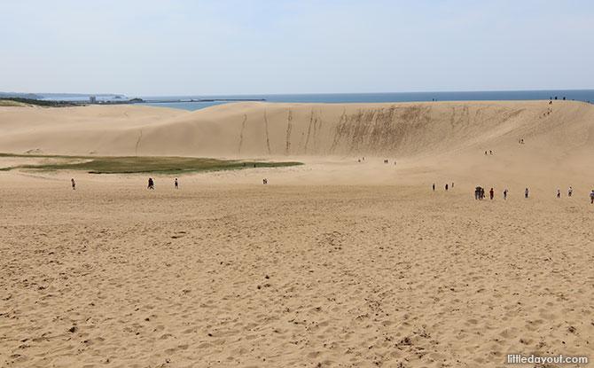 Picturesque Desert-like Sand Dunes in Japan