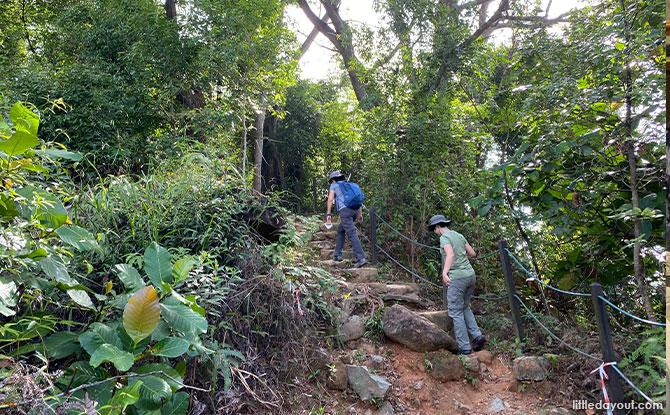 Puaka Hill Granite Stone Steps