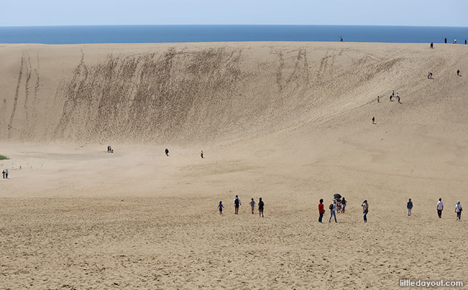Tottori is located in the western part of the Sanin Kaigan GeoPark