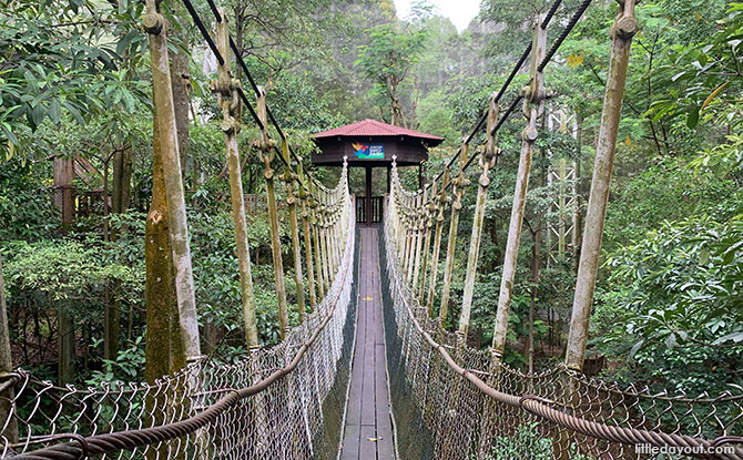 Suspension Bridge at African Treetops