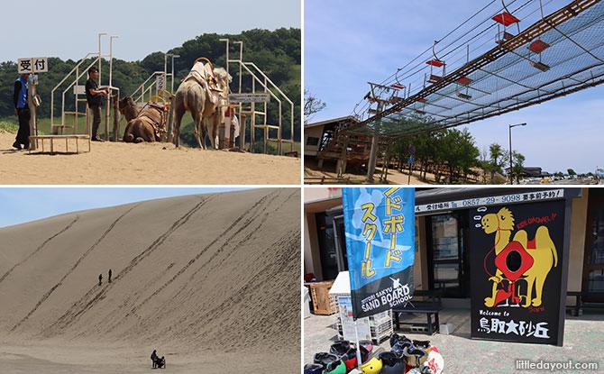 29 tottori sand dunes japan