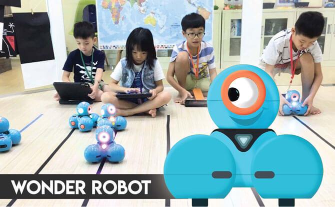 2 Terra Minds Holiday Programmes Wonder robot