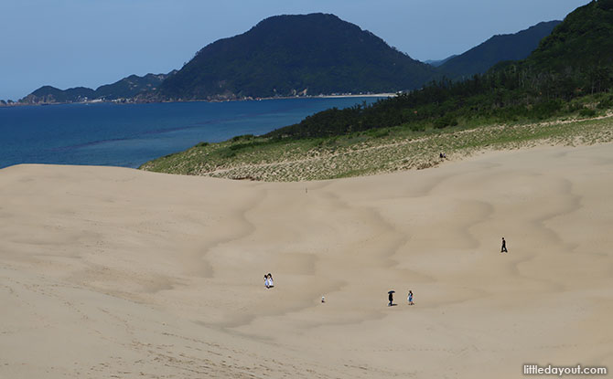 Sand Dunes Activities at Tottori