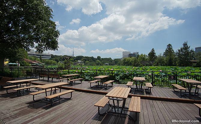 Ueno Zoo's West Garden