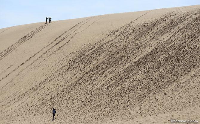 Tottori Sand Dunes Day Trip
