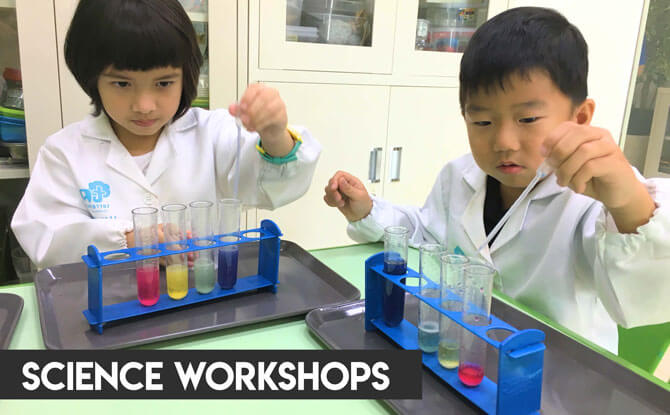 Terra Minds Science Workshops
