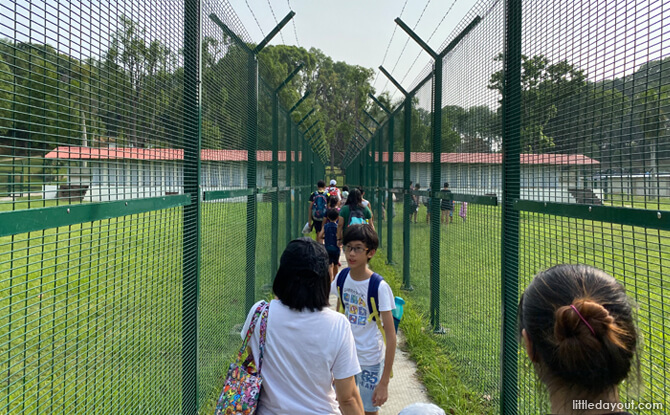 We got a sense of the tight security that those who were kept on the island were subjected to as we walked between high fences at the assembly area, where soccer was often played.