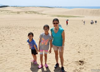 Tottori Sand Dunes: A Simply Sandsational Day Trip to Tottori, Japan