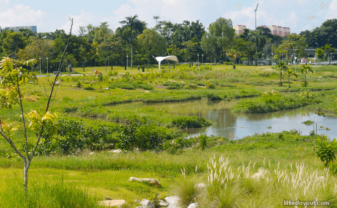 Ecolife at Bishan-Ang Mo Kio Park 21 Mar 2020 [Cancelled]