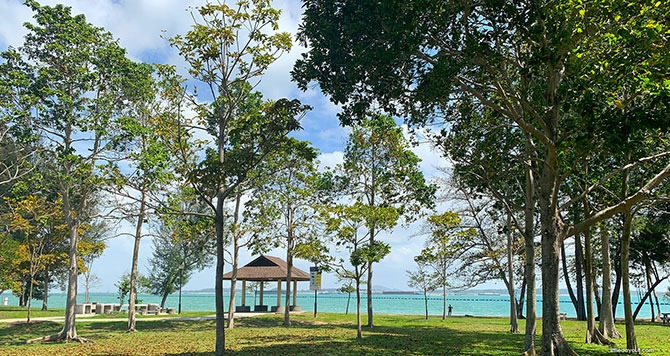 Changi Beach Park Zoom Background Singapore