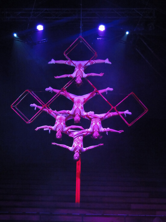 Chinese Knot Acrobat