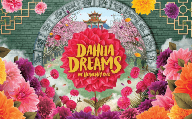 Dahlia Dreams 2020
