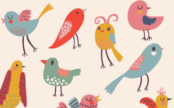 Bird Caricatures Workshop - 9 Feb 2020