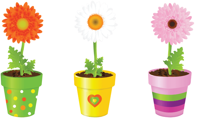 Generic potted flowers