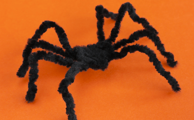 Generic spider insect craft