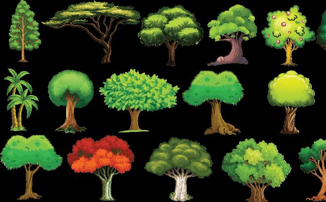 Generic trees