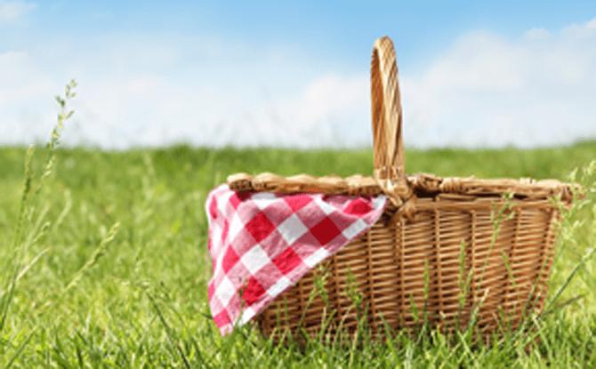 Generic_picnic1-670x415