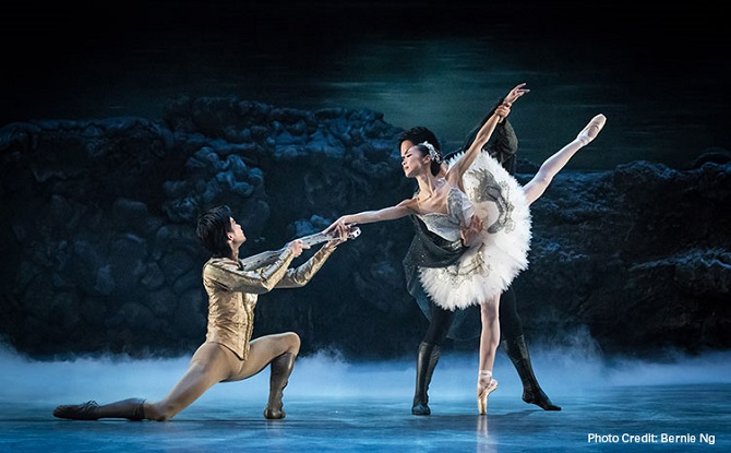 Introduction to Swan Lake