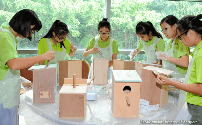 Jurong Bird Park 'Home Tweet Home' Project