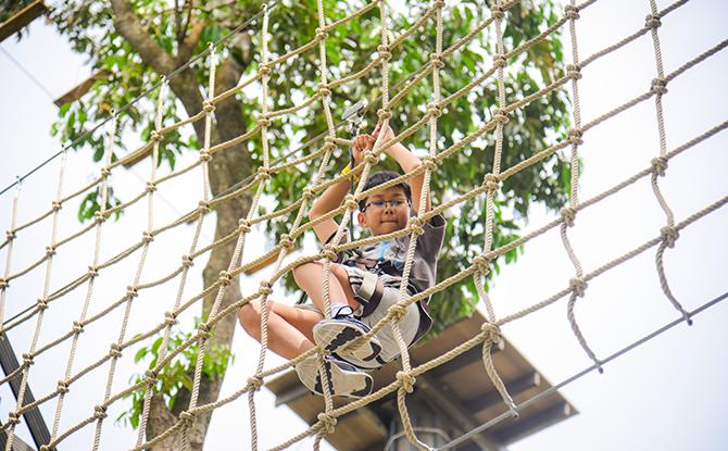 Junior Course Forest Adventure