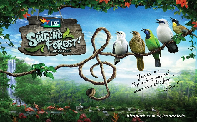 Jurong Bird Park Singing Forest 1