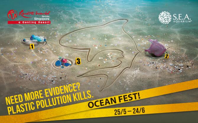 S.E.A. Aquarium: Ocean Fest!