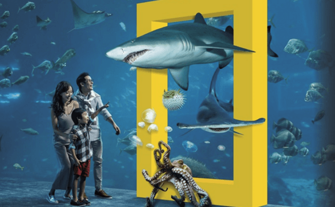 National Geographic's Ocean Wonders