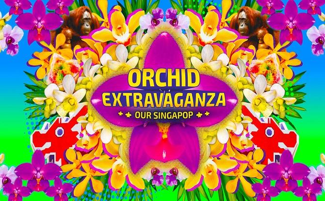 Orchid Extravaganza 1