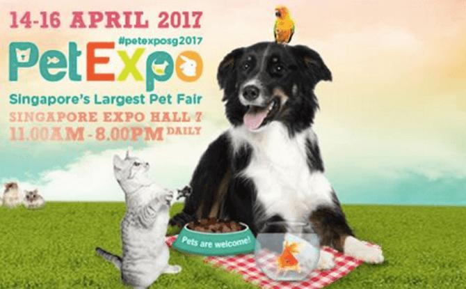 Pet Expo Singapore 2017
