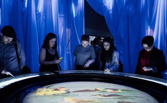 Pool of Tears at Wonderland, ACMI, Photo Anne Moffatt