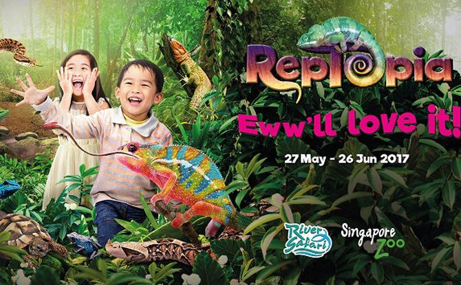RepTopia Singapore Zoo River Safari